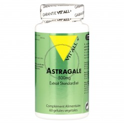 Astragale 500 mg - 60 capsules Vitall+