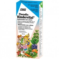 Floradix Kindervital Multivitamines+Calcium - 250 ml - Salus