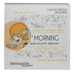 Infusion Moments O'Morning Bio - 15 sachets  Destination Bio