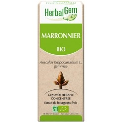 Marronnier bourgeons Bio - 50 ml Herbalgem