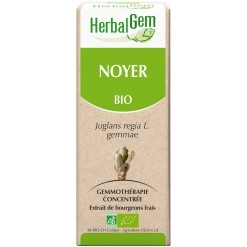 Noyer bourgeons Bio - 50 ml Herbalgem
